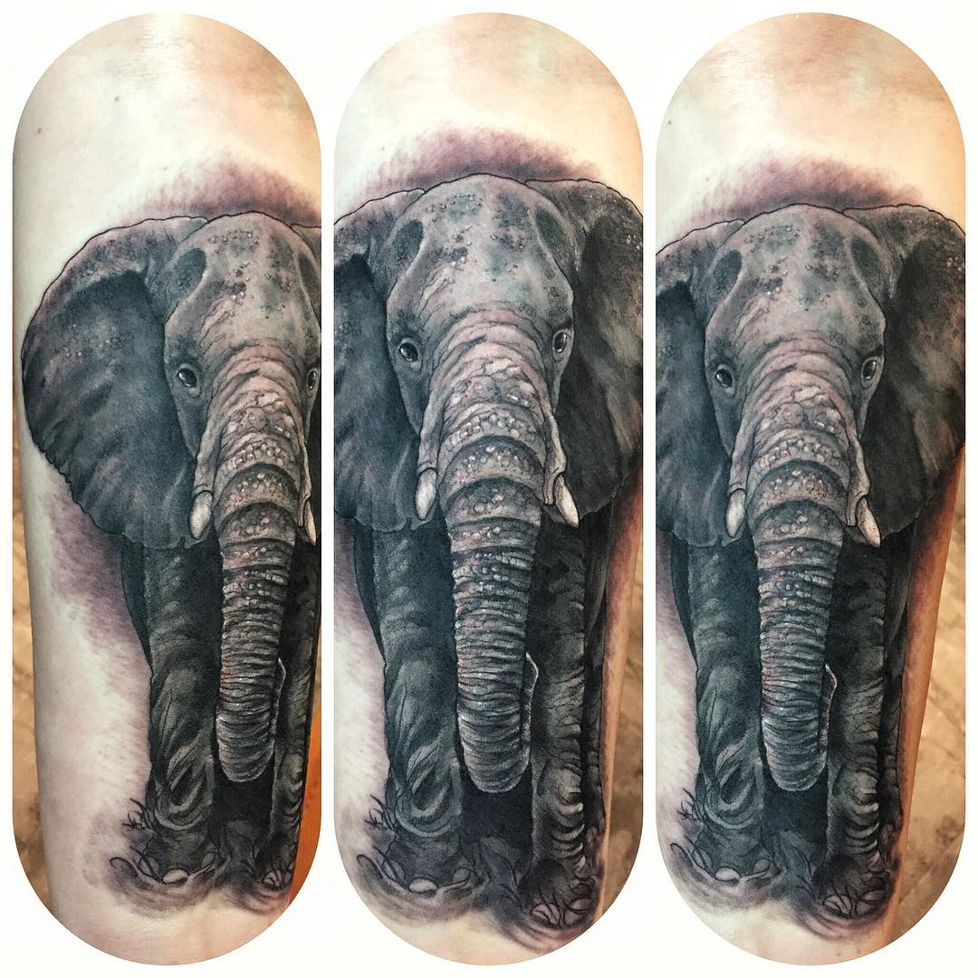 Elephant blackwork tattoo